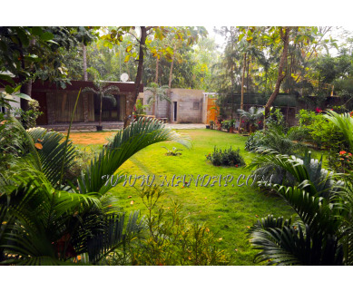 Find the availability of Auro farms in Kottakuppam, Pondicherry and avail the special offers