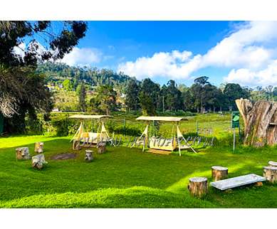 Find the availability of Sterling Kodai Lake Open Lawn in Kodaikanal, Dindigul and avail the special offers